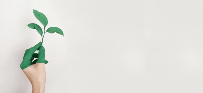 Marken im Spagat zwischen Nachhaltigkeit und Greenwashing