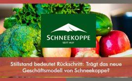 Stillstand bedeutet Rückschritt: Trägt das neue Geschäftsmodell von Schneekoppe? l Implementierung des Leitbildes & Change Management l ESCH. The Brand Consultants GmbH